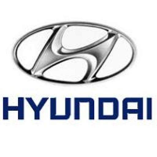 Hyundai Bumper Guards