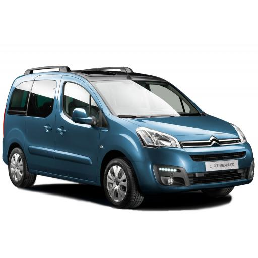 Citroen Berlingo & Multispace mats
