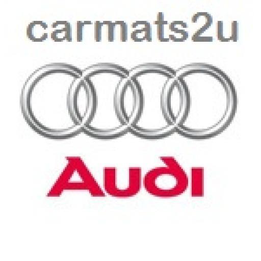 Audi Bumper Guards