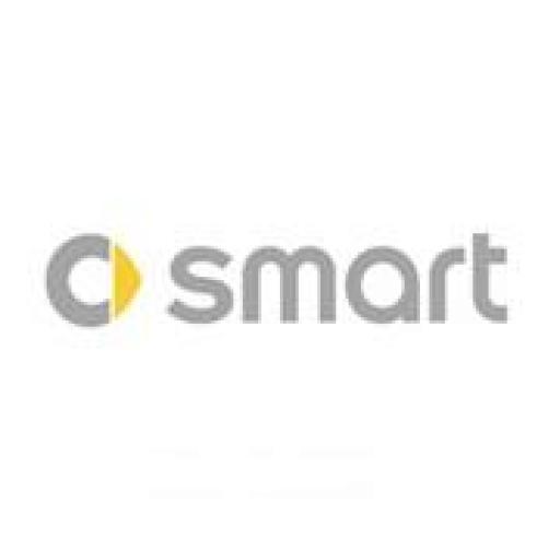 Smart car mats
