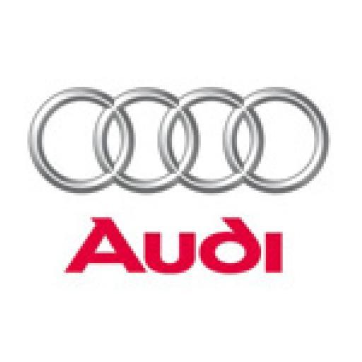 Audi Boot liners mats