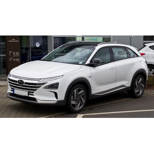 Hyundai Nexo Car Mats